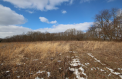 Jerdon Listing H4071 16 and 1/4 Acres, Southeast of Dowagiac